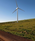The 100 MW Sere Wind Farm in South Africa. Competitive auctions in South Africa have yielded some of the world's lowest prices for grid-connected wind, at US 4.7 cents per kWh