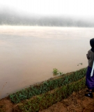 A grandma looks at her dry-season riverbank garden as it is flooded by the Mekong, Chiang Khan, Loei (Thai-Lao border)