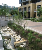 Ecological stormwater Management in Portland, Oregon