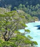 Pascua River, Chile