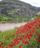 Tigris Valley Threatened by the Ilsu