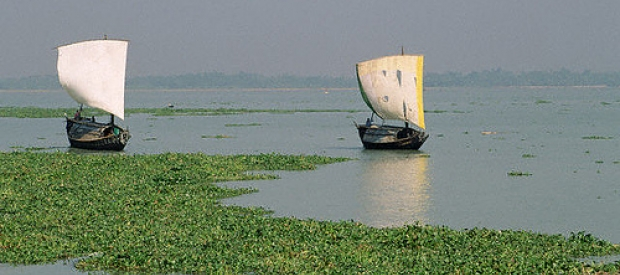 Boats on a river in Bangladesh.