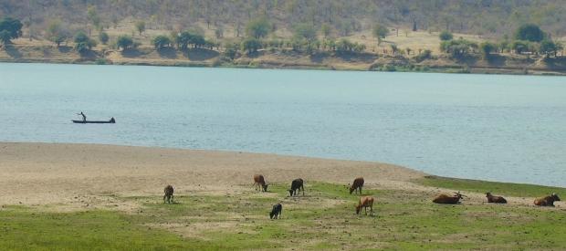 The Zambezi River in Mozambique