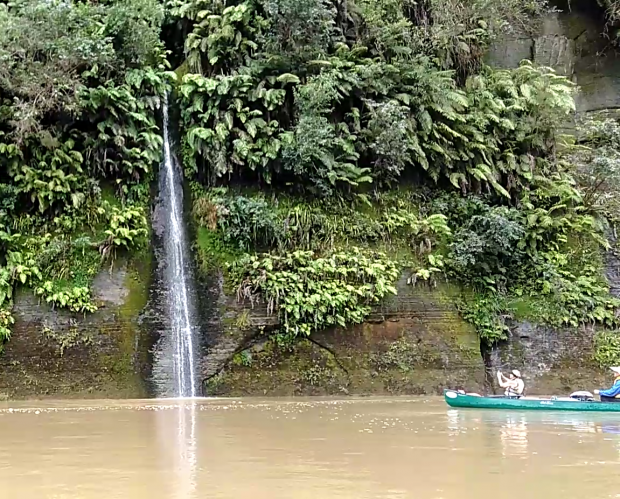Dozens of clear, beautiful waterfalls crashed down the canyon walls into the muddy Whanganui.