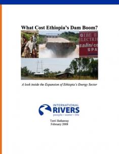 ethiopia_dam_boom_cover.jpg