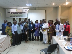 Energy Access workshop in Kinshasa, March 2016